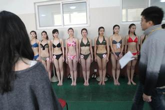 2014年辽宁艺考文化课新政策,艺术生文化课分数线稳中提升